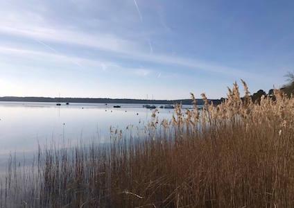Lacanau, randonnée, Gironde, Les Pépites Girondines, balade