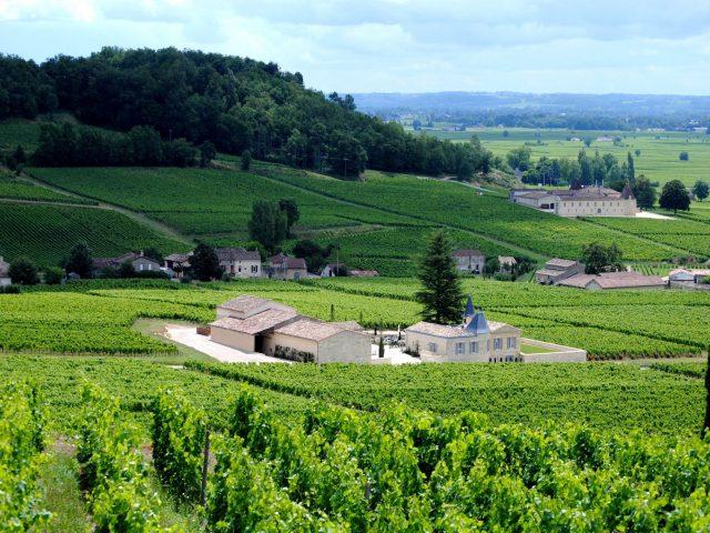 Les Pépites Girondines, 5 restaurants dans les vignes, l'Atelier de Candale, Saint Laurent des Combes, Saint Emilion